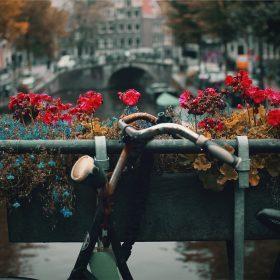 Exótica y vibrante: Así es Ámsterdam