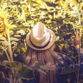 Sombreros del verano