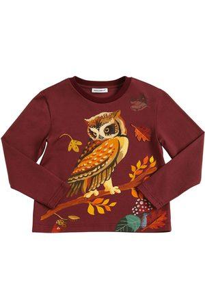 Dolce & Gabbana | Niña Owl Printed Jersey Long Sleeve T-shirt 8a
