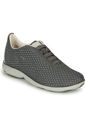 Franco perturbación Mostrarte  Zapatillas de Geox para hombre | FASHIOLA.es