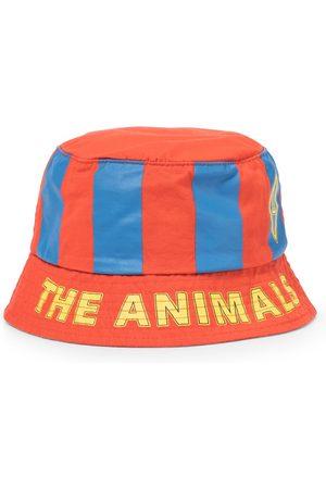 The Animals Observatory Sombrero de pescador Starfish