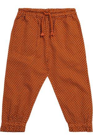 Caramel Pantalones Shrimp de algodón