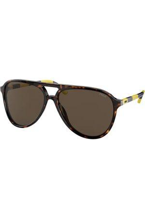 Polo Ralph Lauren PH4173 500373 Shiny Dark Havana