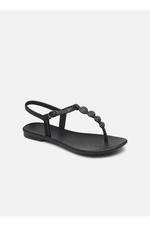 Grendha Cacau Sandal Fem