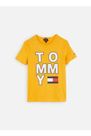 Tommy Hilfiger T-shirt Multi Application Aw Tee S/S