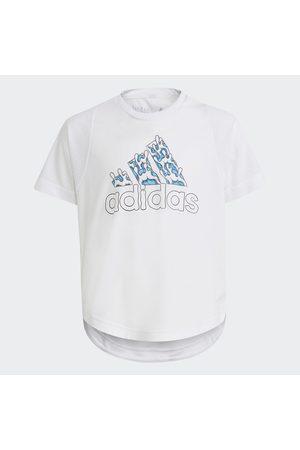 adidas Camiseta Aaron Kai