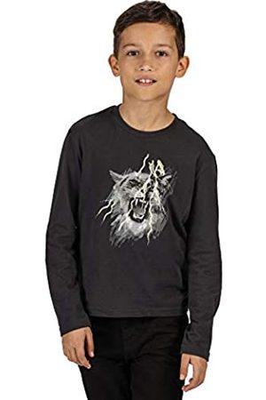 Regatta Camiseta Unisex de Manga Larga de algodón Wenbie Coolweave con Estampado gráfico Camisetas/Polos/Chalecos, Unisex niños, Camisetas/Polos/Camisetas, RKT113 038C07